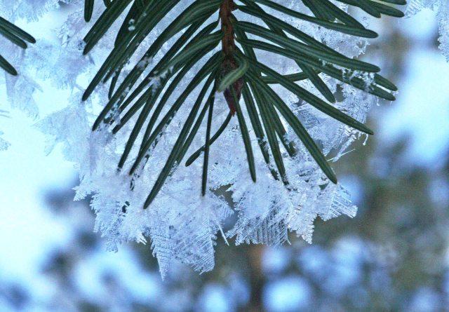 john snow crystals
