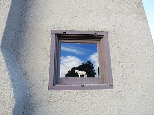 Martha horse in window