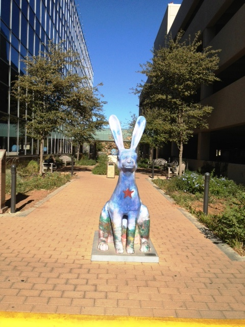 rabbit odessa