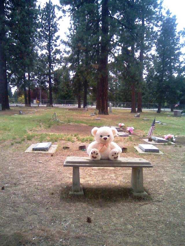 ross cemetery 1