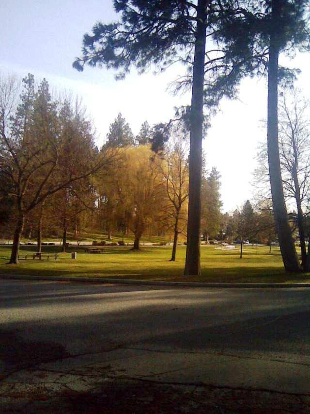 manito park spring entrance