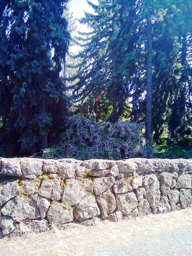 manito wall