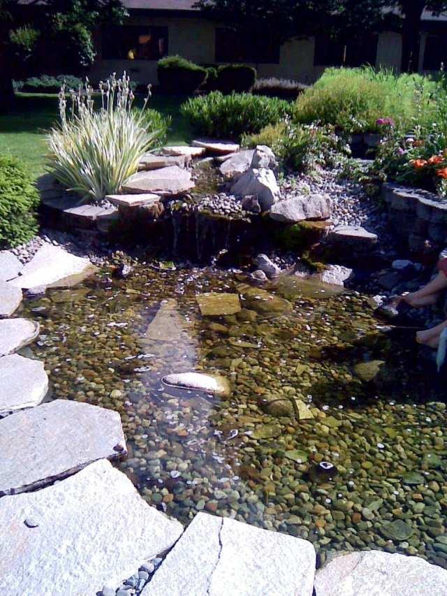 royal park pond 6-24-12