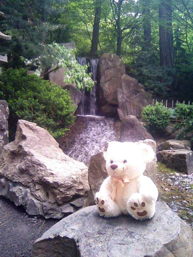 ross japanese garden 2