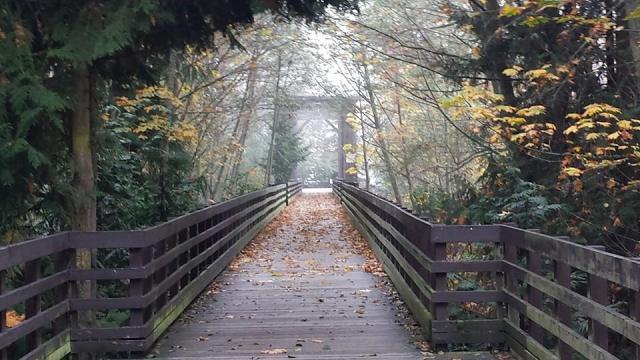 Bev Dungoness Bridge