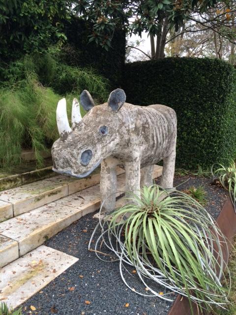 rhino austin