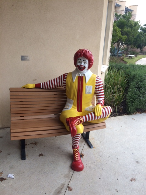 Steve Ronald McDonald