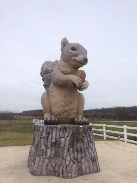 squirrel statute 2 U