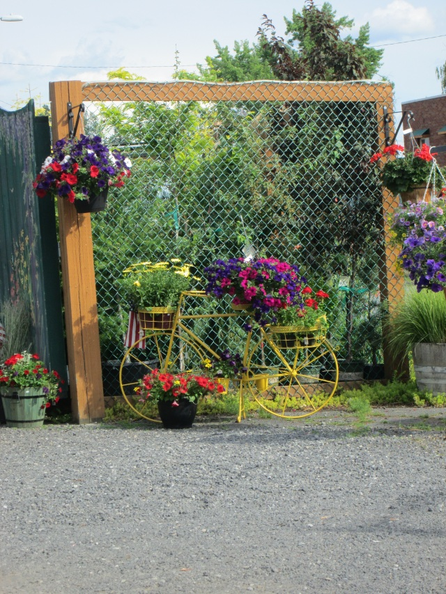 bicycle flower1 5-24-15