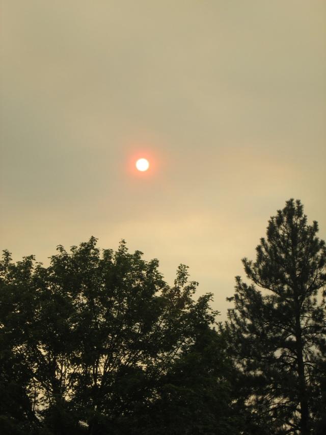 sun smoke 8-1-15