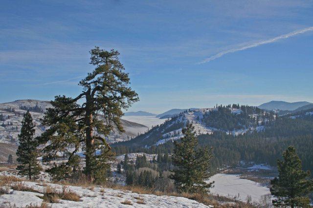 john tree Sun Mountain,Winthrop U