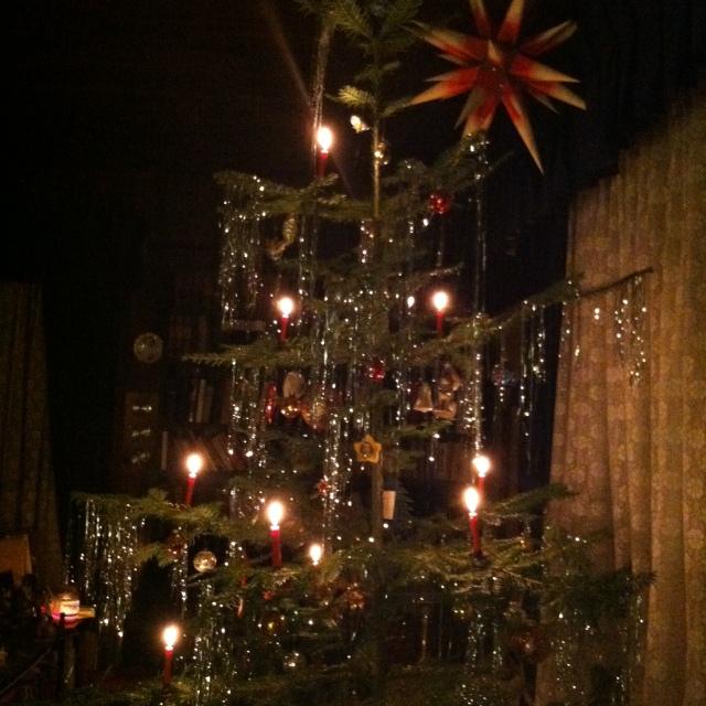 angelika christmas tree u