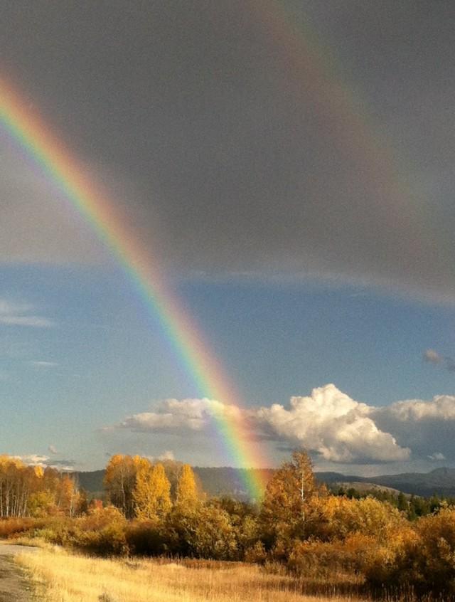 donna-double-rainbow