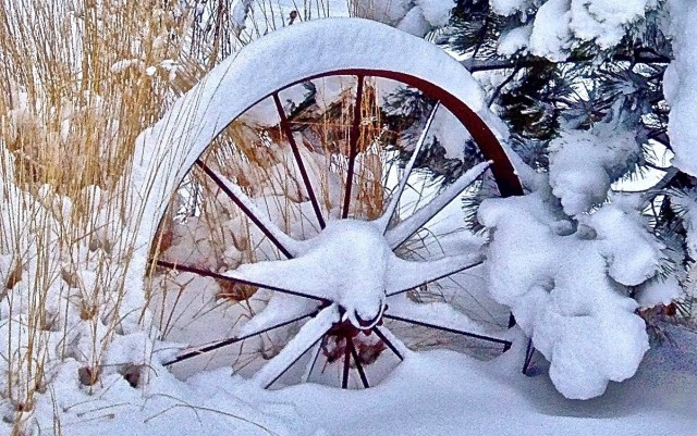 jim-h-wagon-wheel-in-out-yard